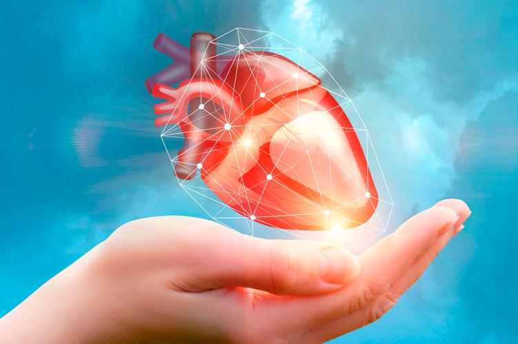 Ateneo de Cardiología - Estudios COAP y Mitra-FR