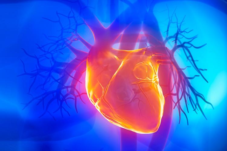 Ateneo de Cardiología - Caso Clínico: Hibernación Miocárdica