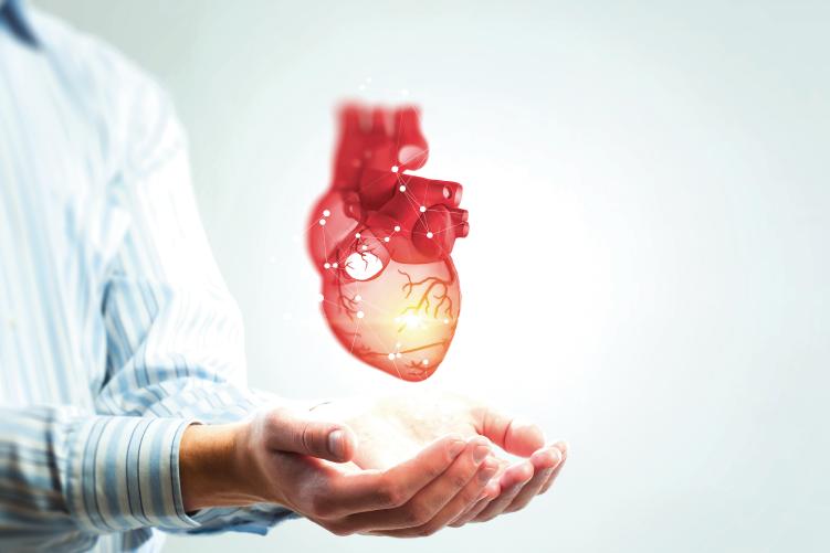 Ateneo de Cardiología -  Bibliográfico - Estudio complete