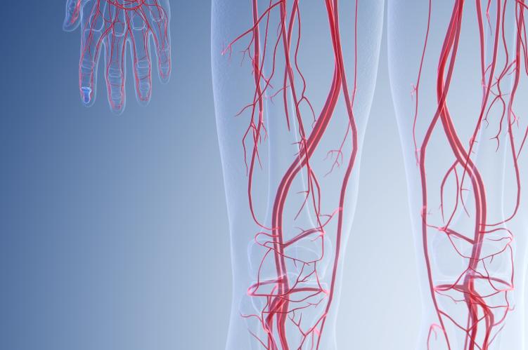 Ateneo Central Online | Puesta al día | ARTERIOPATÍA PERIFÉRICA: Lo que debe saber el Cardiólogo Clínico
